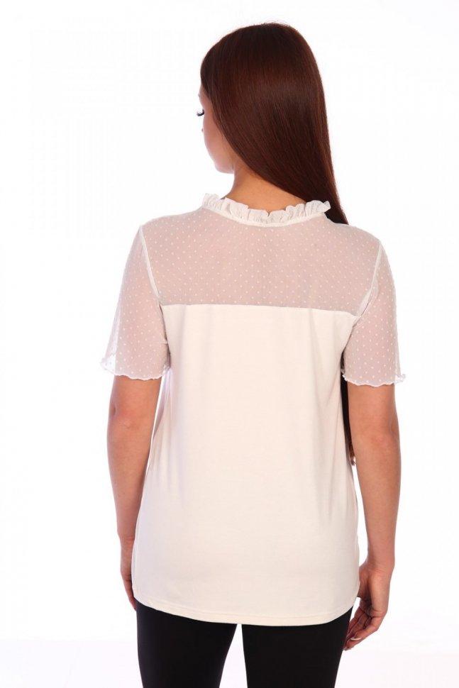 Блуза трикотажная Евдокия