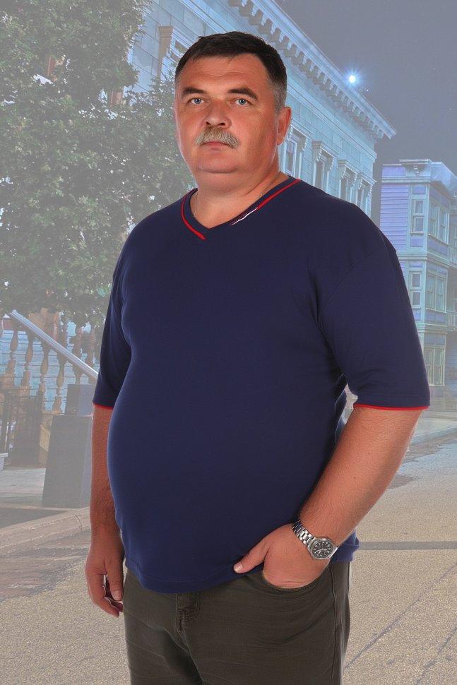 Футболка мужская Николай (темно-синяя) фото