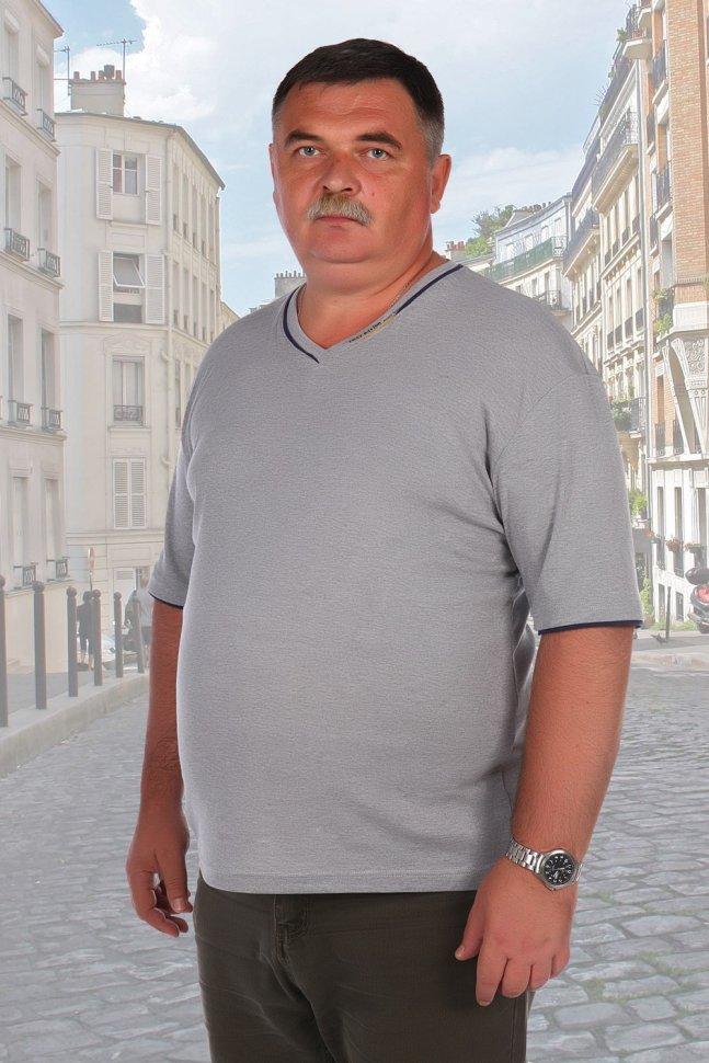 Футболка мужская Николай (серая) фото