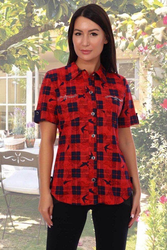 Рубашка трикотажная Присцилла (красная) фото