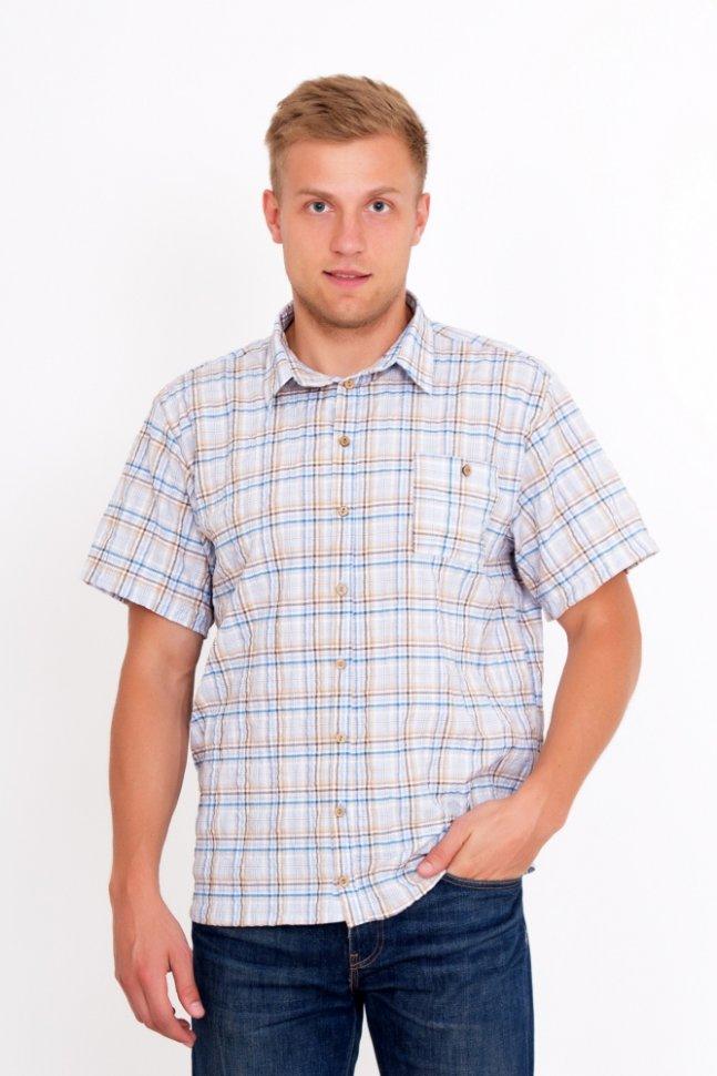 Рубашка мужская Бруно (бежевая)Рубашки<br><br>Цвет: Белый, Голубой, Бежевый; Размер RU: 48, 50, 52, 54, 56, 58;